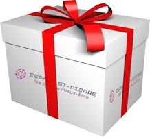 cadeau-noel-esp_s